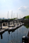 The Piers Park Sailing Center