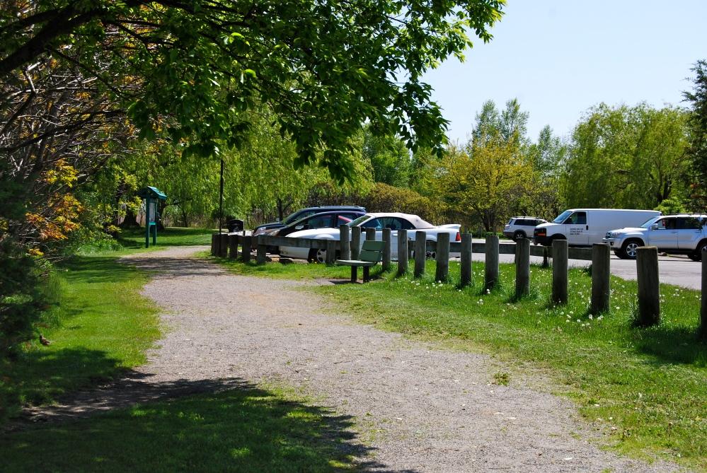 Belle Isle Marsh Reservation (4/6)