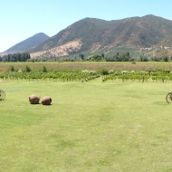 We spent a night in the Colchagua Valley where we visited a couple of wineries.